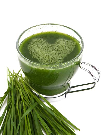 Chlorophyll is normally thought of in plants, but it has qualities that can help increase health in humans.