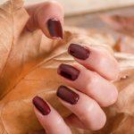 Top 5 Fall Nail Colors