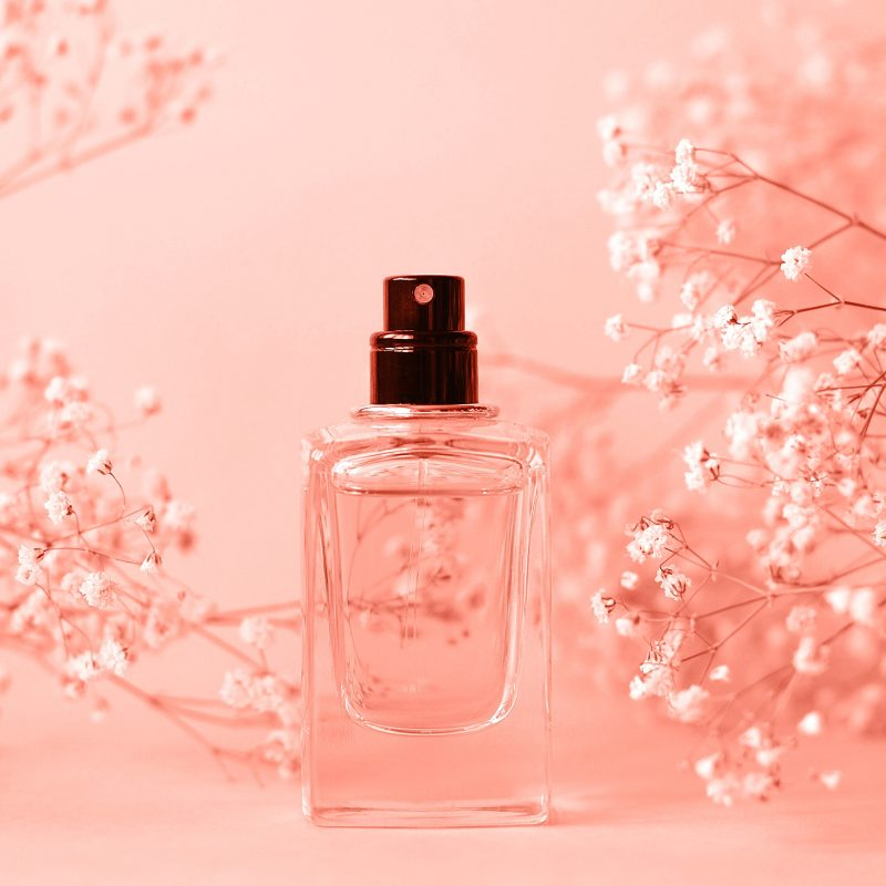 Perfect Perfumes for Spring