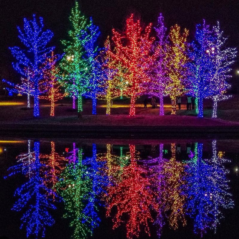 See the Dazzling Vitruvian Lights in Addison