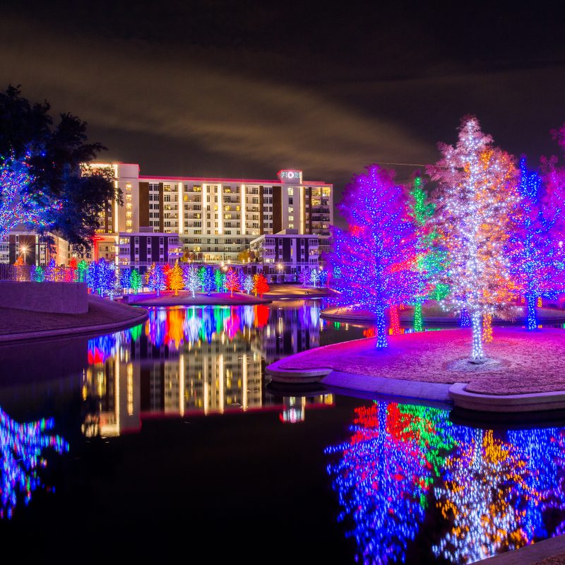 Last Chance to See Vitruvian Lights