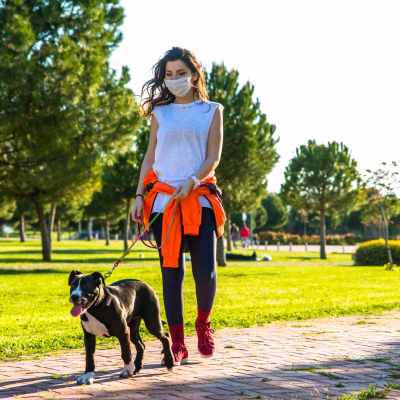 How Walking Everyday Improves Your Health