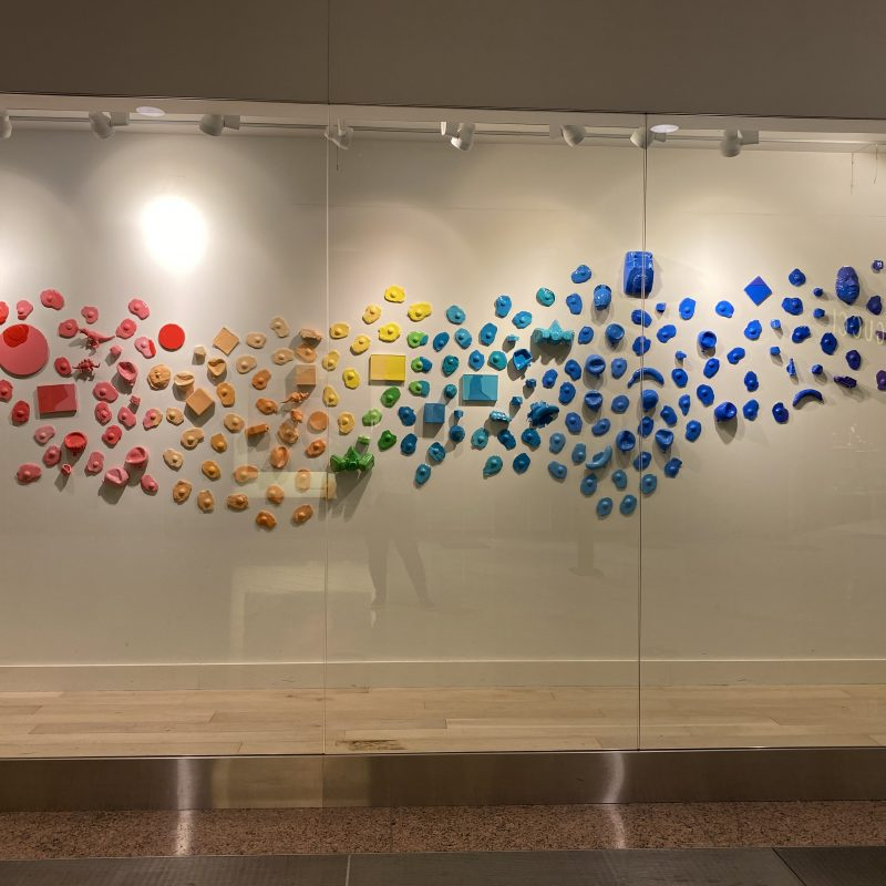 Celebrate Earth Day With an Environmental Education Exhibit at Galleria Dallas
