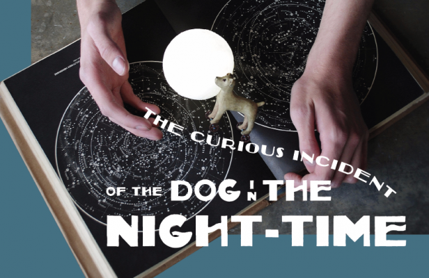 The Curious Incident of the Dog in the Night-Time at WaterTower Theatre