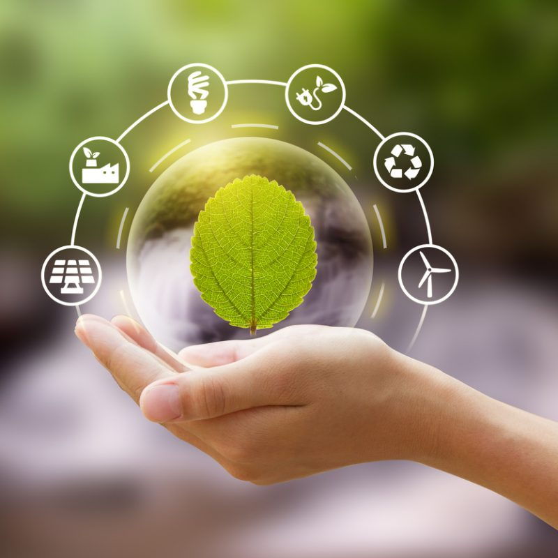 Sustainable Businesses in the North Dallas Corridor